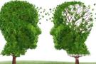 神经退行性疾病新机制:DNA损伤修复遭破坏