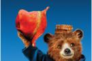 帕丁顿熊入职有道精品课 爱丽丝带熊上课