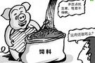 猪饲料中抗生素的使用分析抗生素残留检测仪