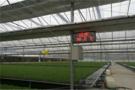 温室大棚控制系统助力大棚自动化