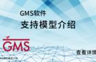 GMS軟件支持模型介紹