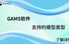 GAMS支持的模型类型