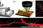 科学家借助全新非接触式亚微米红外光谱,首次成功直观揭示神经元中淀粉样蛋白聚集机理