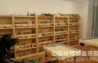 京师博仁解析小学心理咨询室配备