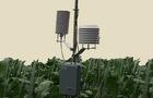 为什么田间小型气象站价格都不一样