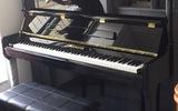 羅切斯特鋼琴Rochester 初學者成人專業考級演奏教學琴 全新立式鋼琴