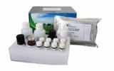 纤维蛋白溶酶原(Glu-Plasminogen)酶联免疫试剂盒