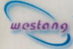 Western Blot/WB/免疫印記/蛋白印記技術服務/實驗代測 促銷