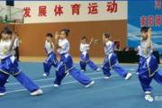 2017河南武术特色学校比赛在南阳市举行