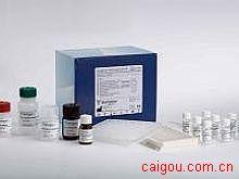 小鼠AQP-3,水通道蛋白3Elisa试剂盒