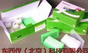 人C反应蛋白试剂盒