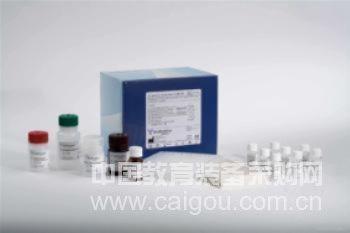 兔凝血酶原片段F1+2(F1+2)ELISA Kit