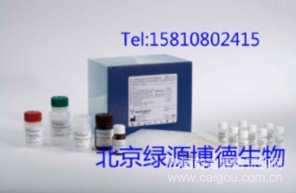 HCB代理,品牌HCB北京地区总代理,HCB elisa试剂盒价格