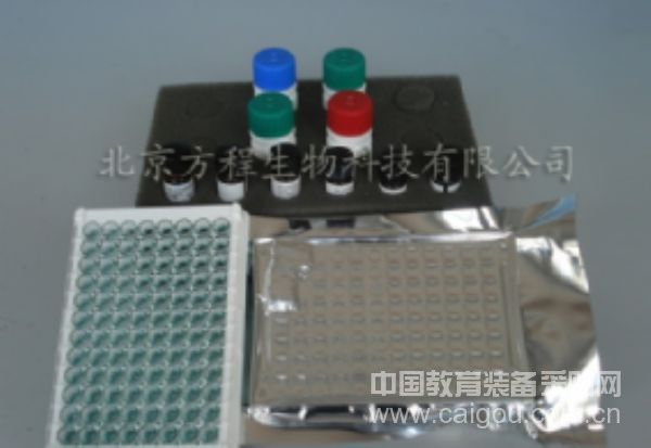 ELISA试剂盒现货供应小鼠IL-8/CXCL8 ELISA Kit检测价格