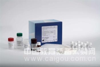 猪干扰素β(IFNβ)ELISA试剂盒