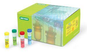 人T淋巴细胞亚群检测盒 (T-Subset)