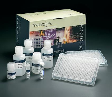 大鼠纤维蛋白原(FB)ELISA试剂盒