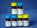 P0038 特级胎牛血清/Fetal bovine serum(Defined FBS)