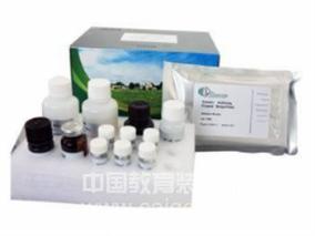 犬乙酰胆碱受体抗体(AChRab)ELISA Kit