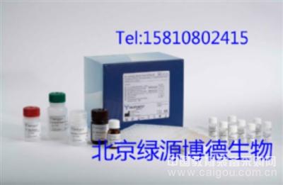 人乙酰胆碱(ACH)elisa试剂盒,人乙酰胆碱(ACH进口试剂盒