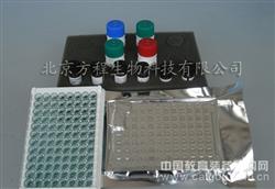 小鼠神经胶质纤维酸性蛋白(GFAP)elisa kit试剂盒代测