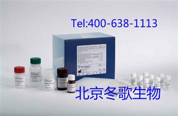 Human粒细胞特异性抗核抗体,人(GS-ANA)elisa试剂盒