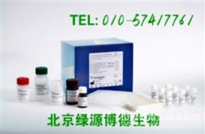 人血管紧张素Ⅰ转化酶 Elisa kit价格,ACEⅠ进口试剂盒说明书